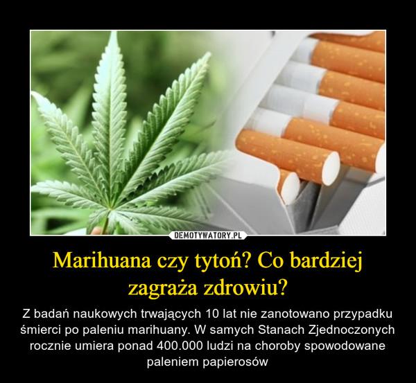 Marihuana czy tytoń? Co bardziej zagraża zdrowiu? – Z badań naukowych trwających 10 lat nie zanotowano przypadku śmierci po paleniu marihuany. W samych Stanach Zjednoczonych rocznie umiera ponad 400.000 ludzi na choroby spowodowane paleniem papierosów