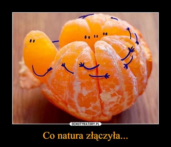Co natura złączyła... –