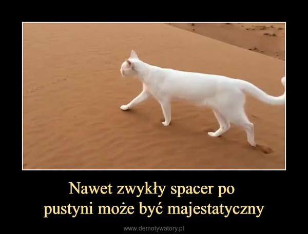 Nawet zwykły spacer po pustyni może być majestatyczny –