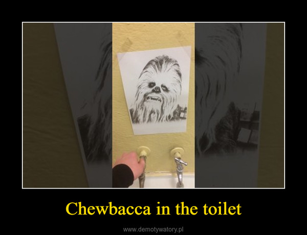 Chewbacca in the toilet –