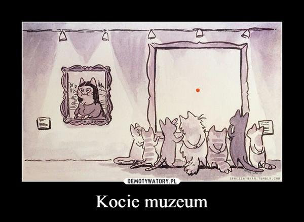 Kocie muzeum –