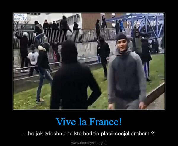 Vive la France! – ... bo jak zdechnie to kto będzie płacił socjal arabom ?!
