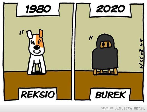 Postęp –  1980 REKSIO2020 BUREK