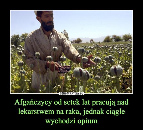 Afgańczycy od setek lat pracują nad lekarstwem na raka, jednak ciągle wychodzi opium –