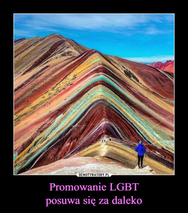 Promowanie LGBTposuwa się za daleko –