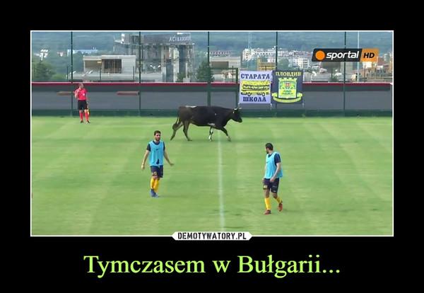 Tymczasem w Bułgarii... –