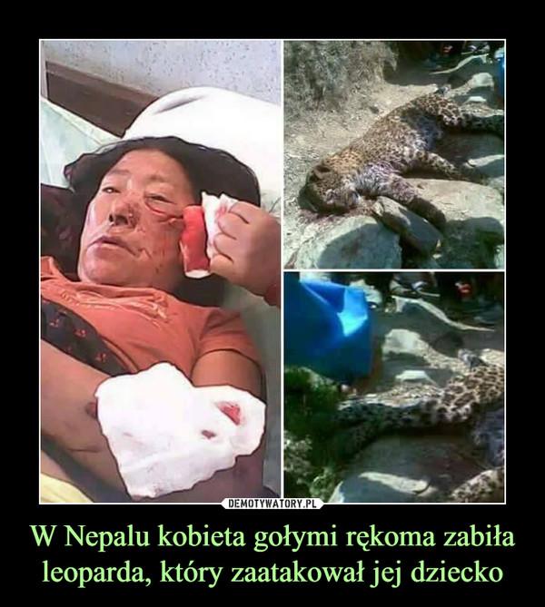 W Nepalu kobieta gołymi rękoma zabiła leoparda, który zaatakował jej dziecko –