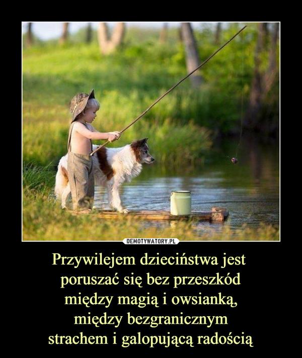 Przywilejem dzieciństwa jest poruszać się bez przeszkód między magią i owsianką, między bezgranicznymstrachem i galopującą radością –