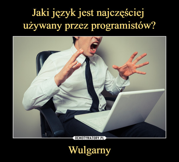 Wulgarny –