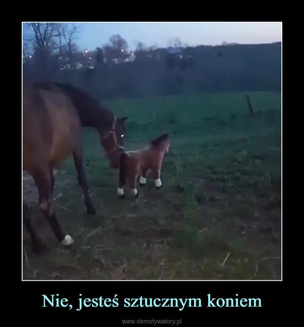 Nie, jesteś sztucznym koniem –
