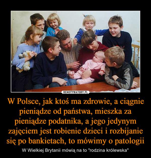 """W Polsce, jak ktoś ma zdrowie, a ciągnie pieniądze od państwa, mieszka za pieniądze podatnika, a jego jedynym zajęciem jest robienie dzieci i rozbijanie się po bankietach, to mówimy o patologii – W Wielkiej Brytanii mówią na to """"rodzina królewska"""""""