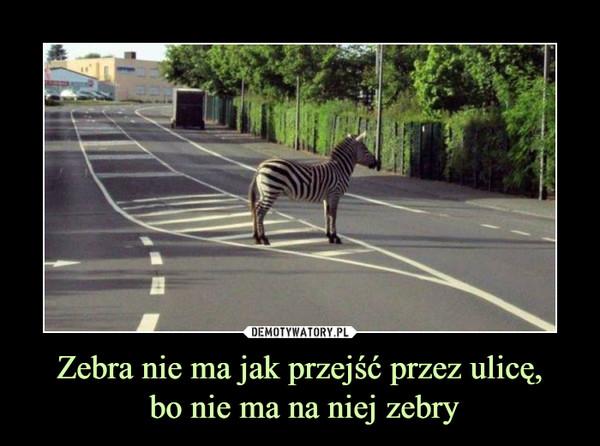 Zebra nie ma jak przejść przez ulicę, bo nie ma na niej zebry –