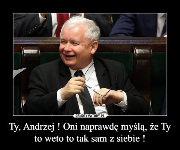 Ty, Andrzej ! Oni naprawdę myślą, że Ty to weto to tak sam z siebie ! –