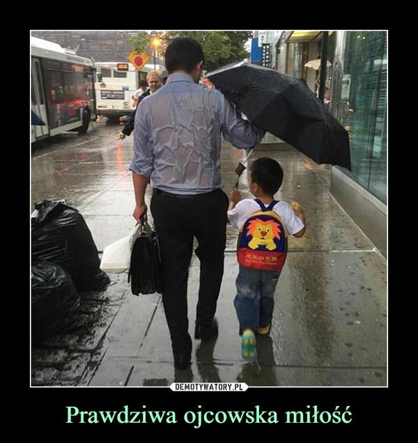 Prawdziwa ojcowska miłość –