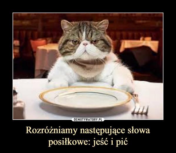 Rozróżniamy następujące słowa posiłkowe: jeść i pić –
