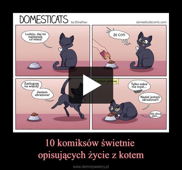 10 komiksów świetnie opisujących życie z kotem –