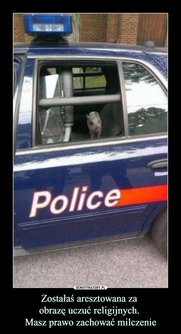 Zostałaś aresztowana za obrazę uczuć religijnych. Masz prawo zachować milczenie –  police