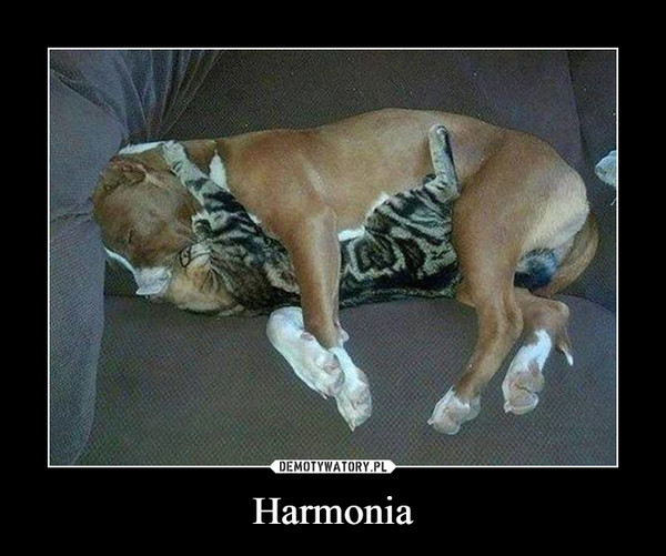Harmonia –