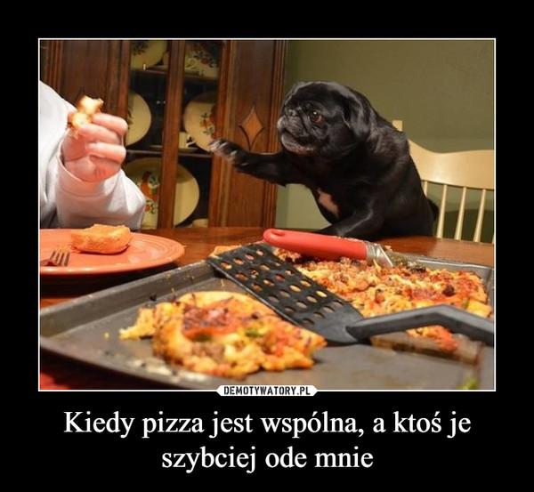 Kiedy pizza jest wspólna, a ktoś je szybciej ode mnie –