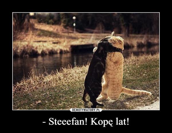 - Steeefan! Kopę lat! –