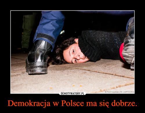 Demokracja w Polsce ma się dobrze.