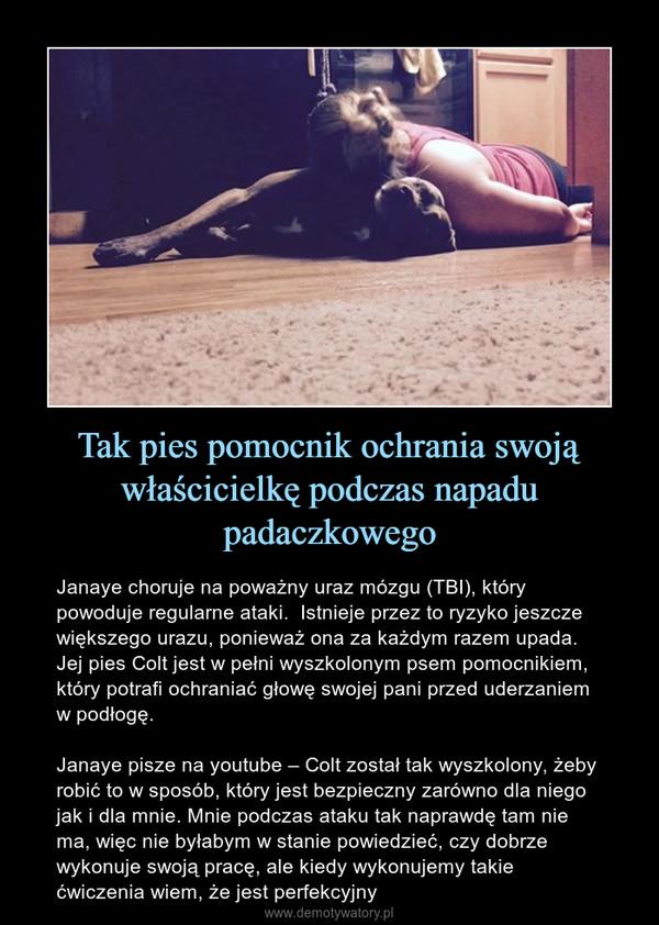 Tak pies pomocnik ochrania swoją właścicielkę podczas napadu padaczkowego – Janaye choruje na poważny uraz mózgu (TBI), który powoduje regularne ataki.  Istnieje przez to ryzyko jeszcze większego urazu, ponieważ ona za każdym razem upada. Jej pies Colt jest w pełni wyszkolonym psem pomocnikiem, który potrafi ochraniać głowę swojej pani przed uderzaniem w podłogę.Janaye pisze na youtube – Colt został tak wyszkolony, żeby robić to w sposób, który jest bezpieczny zarówno dla niego jak i dla mnie. Mnie podczas ataku tak naprawdę tam nie ma, więc nie byłabym w stanie powiedzieć, czy dobrze wykonuje swoją pracę, ale kiedy wykonujemy takie ćwiczenia wiem, że jest perfekcyjny
