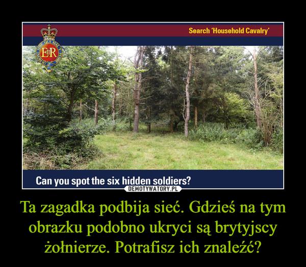 Ta zagadka podbija sieć. Gdzieś na tym obrazku podobno ukryci są brytyjscy żołnierze. Potrafisz ich znaleźć? –