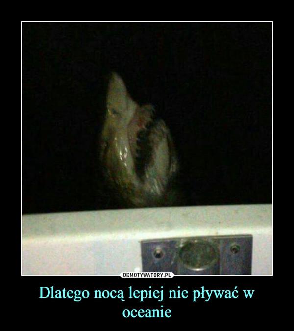 Dlatego nocą lepiej nie pływać w oceanie –