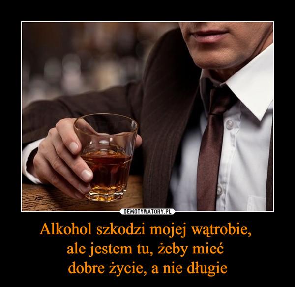 Alkohol szkodzi mojej wątrobie, ale jestem tu, żeby mieć dobre życie, a nie długie –