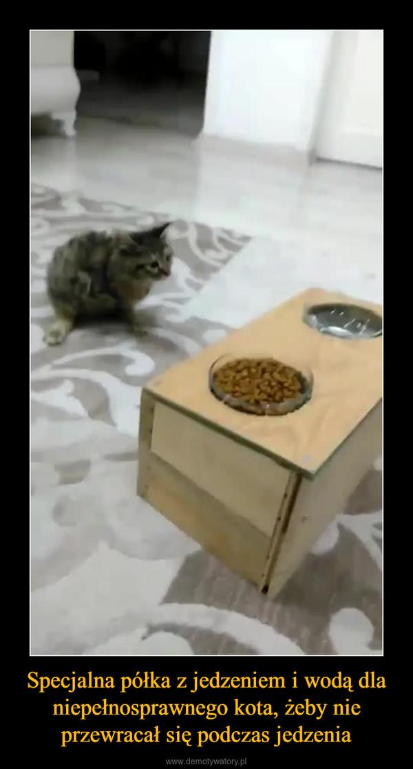 Specjalna półka z jedzeniem i wodą dla niepełnosprawnego kota, żeby nie przewracał się podczas jedzenia –