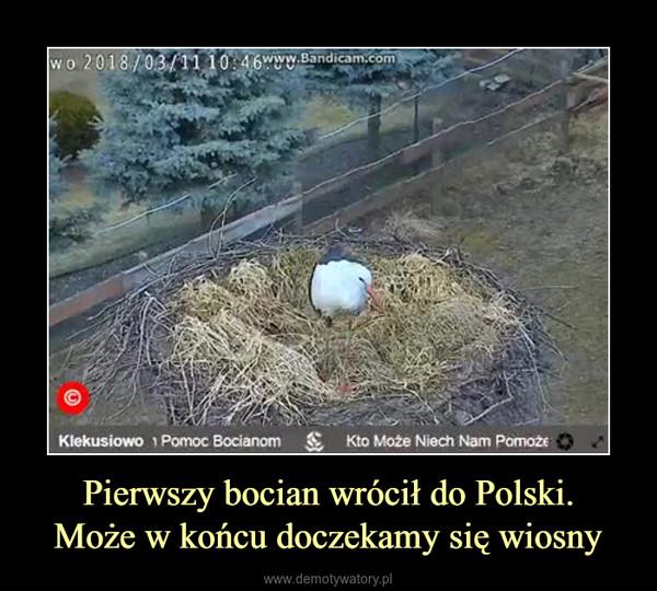 Pierwszy bocian wrócił do Polski.Może w końcu doczekamy się wiosny –