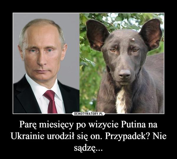 Parę miesięcy po wizycie Putina na Ukrainie urodził się on. Przypadek? Nie sądzę... –