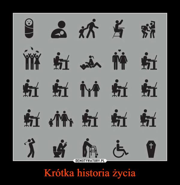 Krótka historia życia –