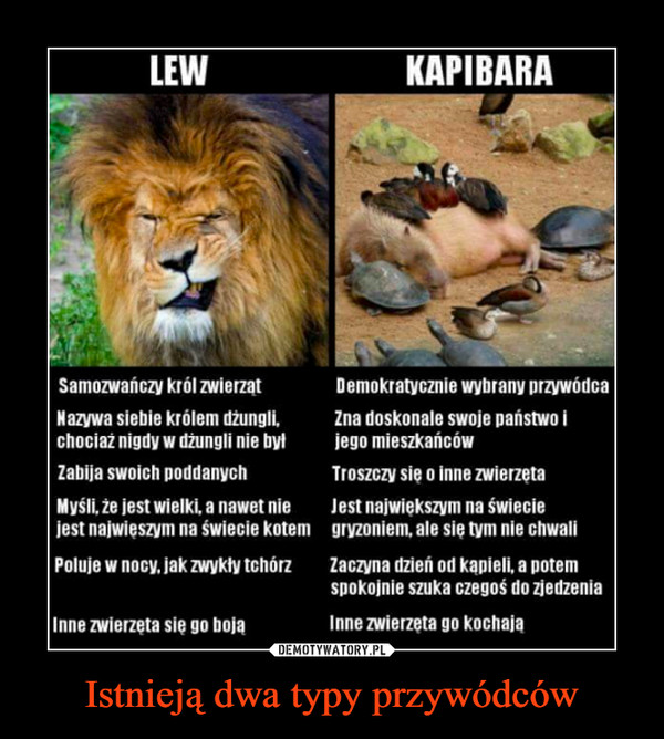 Istnieją dwa typy przywódców –
