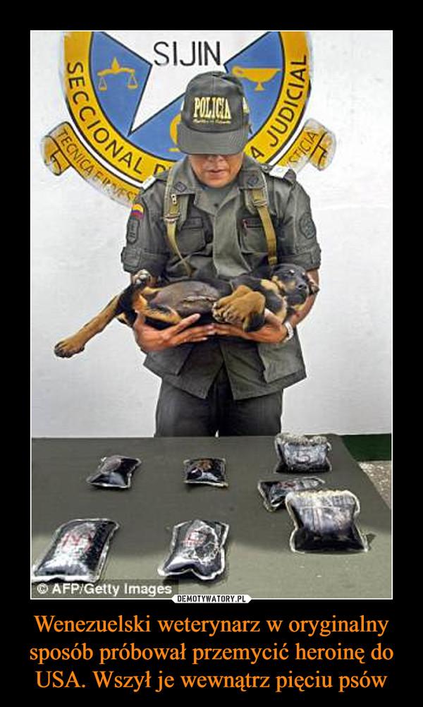 Wenezuelski weterynarz w oryginalny sposób próbował przemycić heroinę do USA. Wszył je wewnątrz pięciu psów –