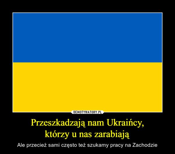 Przeszkadzają nam Ukraińcy,którzy u nas zarabiają – Ale przecież sami często też szukamy pracy na Zachodzie