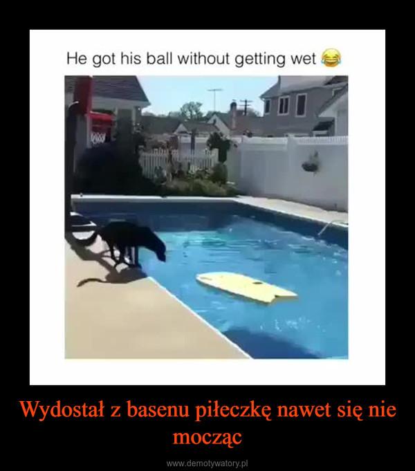 Wydostał z basenu piłeczkę nawet się nie mocząc –