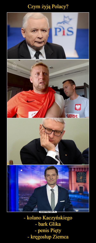 - kolano Kaczyńskiego- bark Glika- penis Pięty- kręgosłup Ziemca –