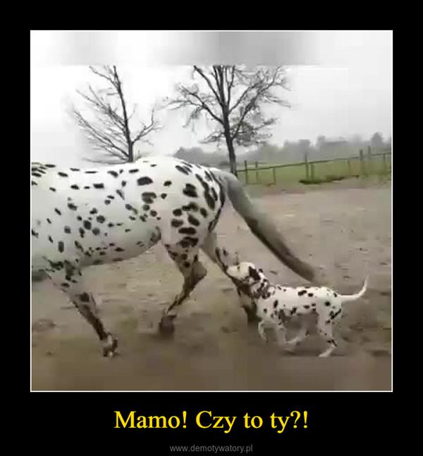 Mamo! Czy to ty?! –