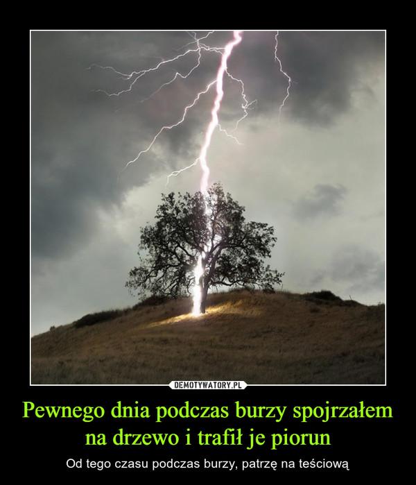 Pewnego dnia podczas burzy spojrzałem na drzewo i trafił je piorun – Od tego czasu podczas burzy, patrzę na teściową
