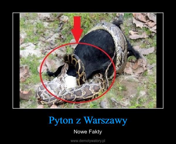 Pyton z Warszawy – Nowe Fakty