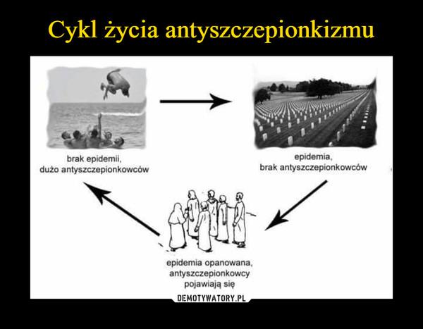 –  brak epidemii,dużo antyszczepionkowcówepidemiabrak antyszczepionkowcówepidemia opanowana,antyszczepionkowcypojawiają się