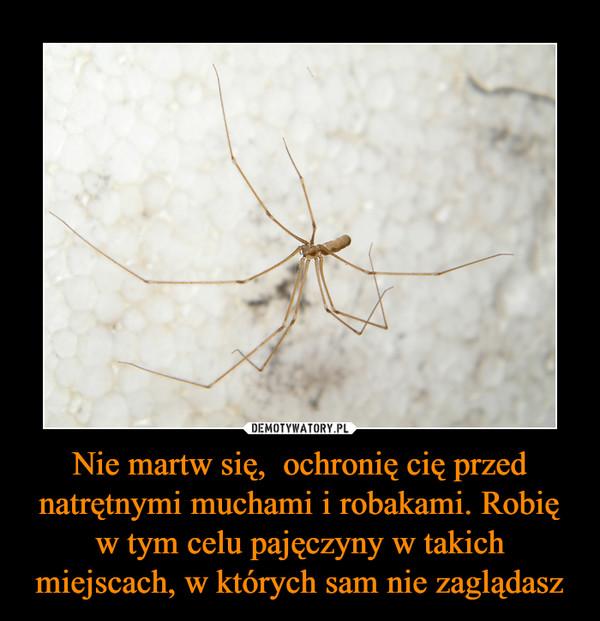 Nie martw się,  ochronię cię przed natrętnymi muchami i robakami. Robię w tym celu pajęczyny w takich miejscach, w których sam nie zaglądasz –