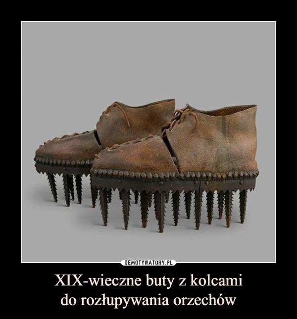 XIX-wieczne buty z kolcamido rozłupywania orzechów –