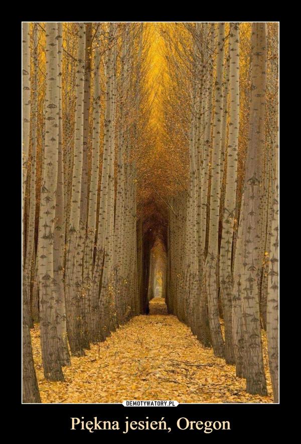 Piękna jesień, Oregon –