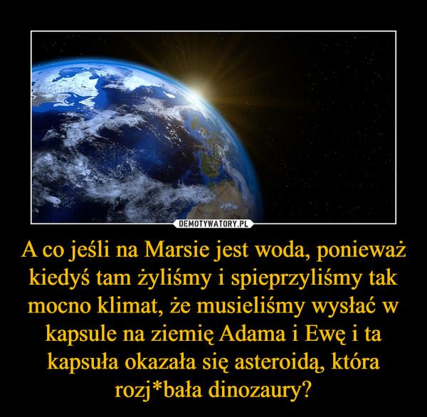 A co jeśli na Marsie jest woda, ponieważ kiedyś tam żyliśmy i spieprzyliśmy tak mocno klimat, że musieliśmy wysłać w kapsule na ziemię Adama i Ewę i ta kapsuła okazała się asteroidą, która rozj*bała dinozaury? –