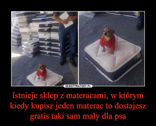 Istnieje sklep z materacami, w którymkiedy kupisz jeden materac to dostajesz gratis taki sam mały dla psa –