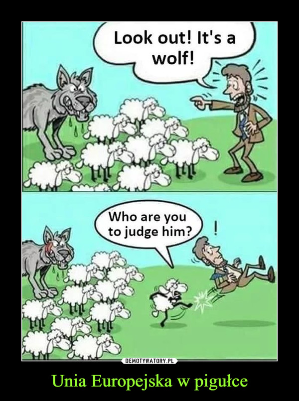 Unia Europejska w pigułce –  Look out! It's a wolf! Who are you to judge him?
