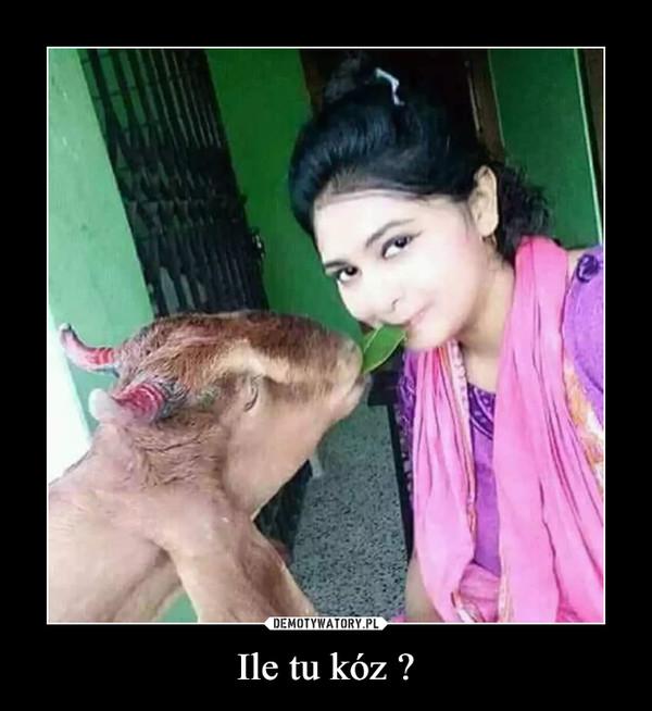 Ile tu kóz ? –