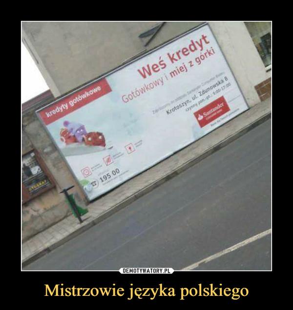 Mistrzowie języka polskiego –  weś kredyt